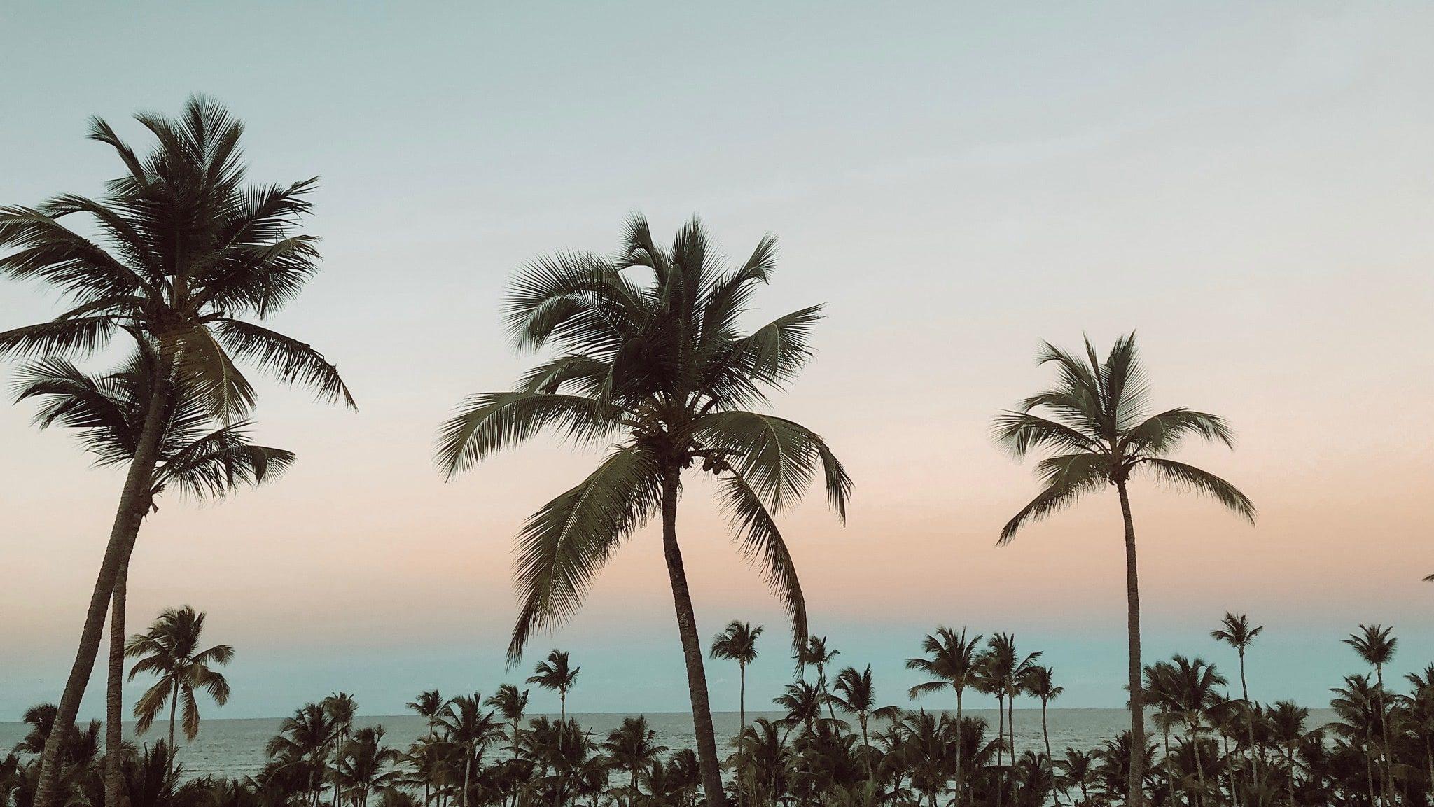Reisetipps für die Dominikanische Republik 2